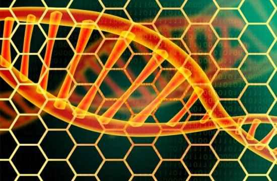 遺伝の画像