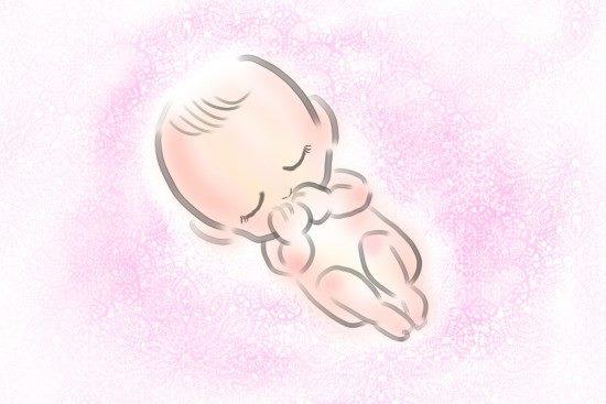 サヴァン症候群_胎児の画像